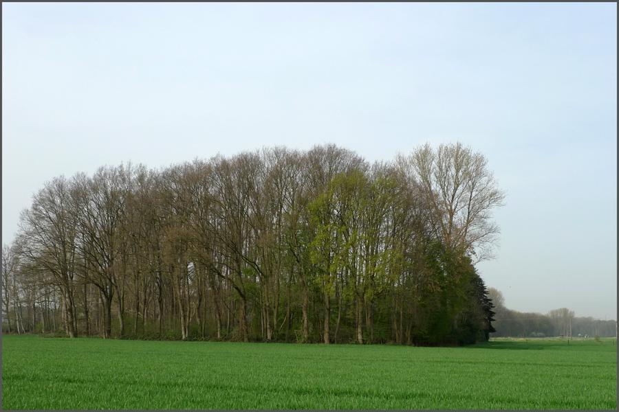 Landschaft-Karken-2-klein