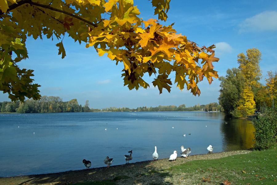 Lago-Herbst8